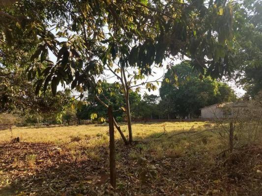 Chácara à venda, 4000 m² por r$ 230.000 - san diego - goianira/go - Foto 8
