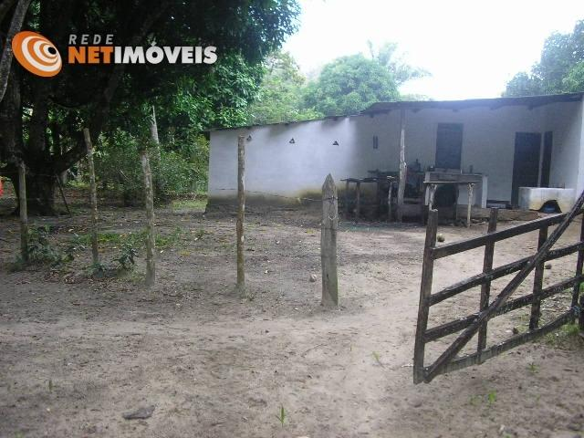 Fazenda com 52,5 Hectares com Fábrica de Azeite de Dendê à Venda na Ilha de Boipeba 402074 - Foto 13