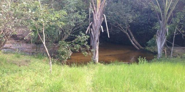 Morros - Ma: Vendo uma Excelente Propriedade Rural