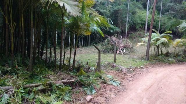 Vendo terreno no gasparinho R$ 42.000,00 - Foto 5