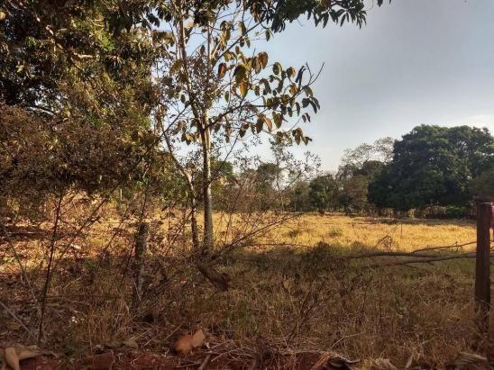 Chácara à venda, 4000 m² por r$ 230.000 - san diego - goianira/go - Foto 3