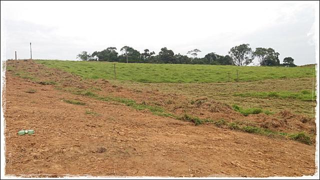 Vendo meu terreno em Ibiúna - Foto 4