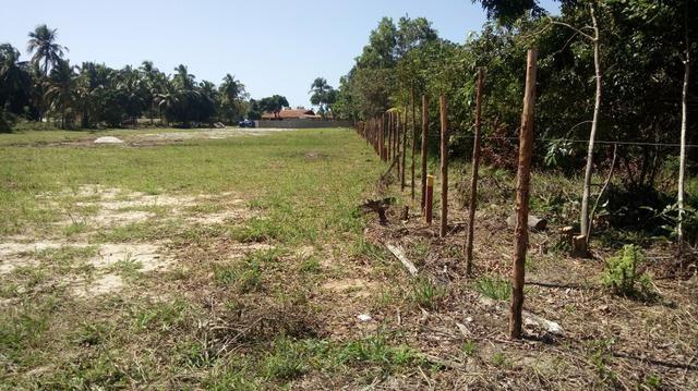 Excelente terreno em Paripueira - Foto 5
