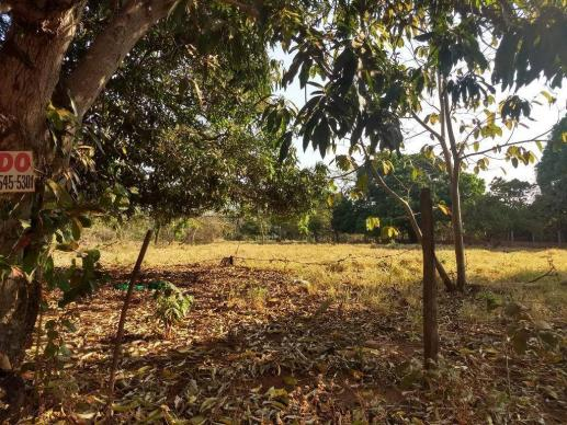 Chácara à venda, 4000 m² por r$ 230.000 - san diego - goianira/go - Foto 5