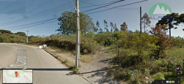 Selecione residencial à venda, vila feliz, almirante tamandaré. - Foto 2
