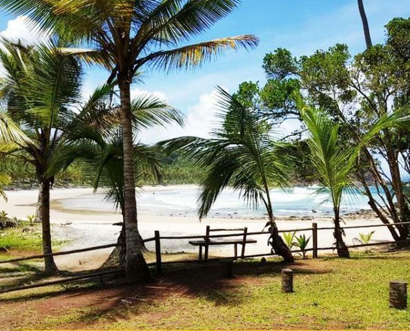 Excelente Terreno de 510m² - Condomínio Fechado no Paraíso de Itacaré - Foto 4