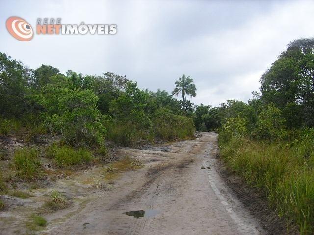 Fazenda com 52,5 Hectares com Fábrica de Azeite de Dendê à Venda na Ilha de Boipeba 402074 - Foto 4