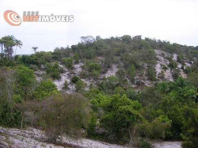 Fazenda com 52,5 Hectares com Fábrica de Azeite de Dendê à Venda na Ilha de Boipeba 402074 - Foto 8