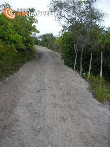 Fazenda com 52,5 Hectares com Fábrica de Azeite de Dendê à Venda na Ilha de Boipeba 402074 - Foto 7