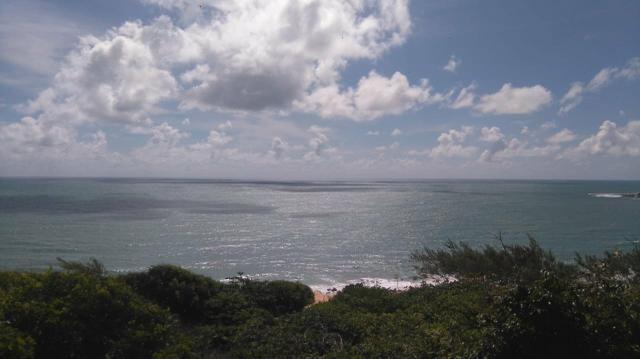 8.000m2 na Cabeceira da Baía dos Golfinhos - Escriturado - Loteamento a venda - Foto 4