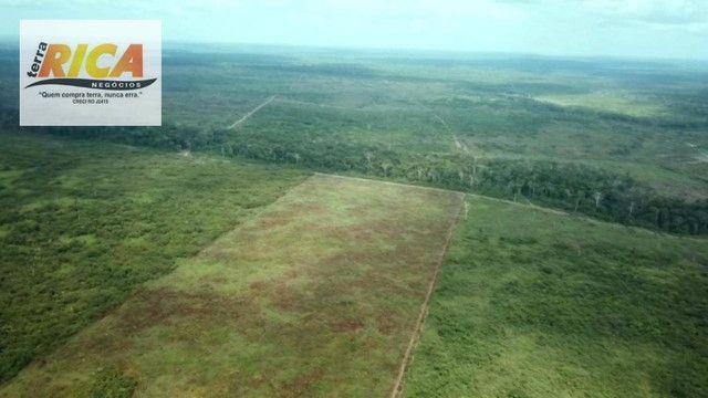 Fazenda com 11.000 Hectares à venda, na Zona Rural - Novo Aripuanã/AM - Foto 11