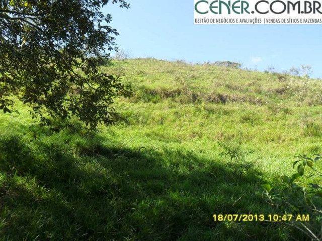 1327/Ótima fazenda de 532 ha com sede centenária em Paraíba do Sul - RJ - Foto 3