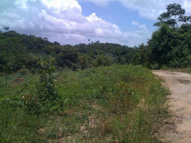 Zé Doca - Maranhão: Vendo Propriedade Rural - Foto 8