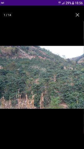 Terreno em Santa Rita de Minas - Foto 9