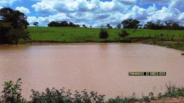 Fazenda de 13 alq. em Trindade - Foto 6