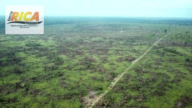 Fazenda com 11.000 Hectares à venda, na Zona Rural - Novo Aripuanã/AM - Foto 15