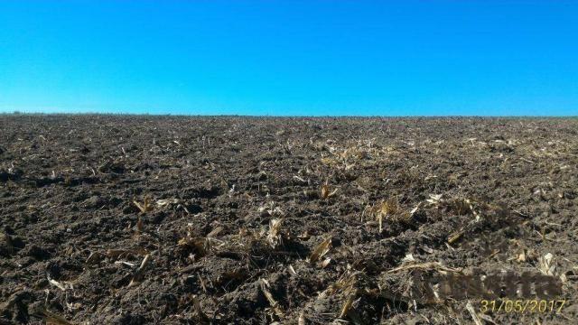 Oportunidade de Excelente Fazenda Para Agricultura!!! - Foto 4