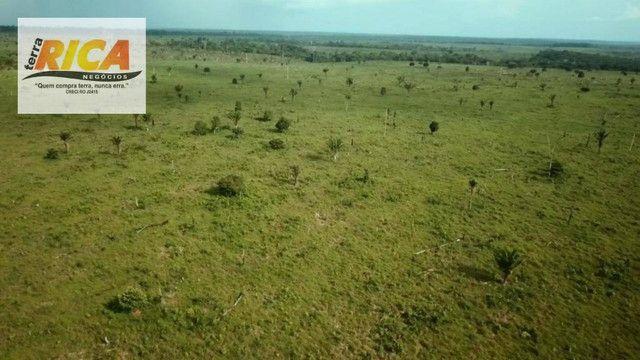 Fazenda com 11.000 Hectares à venda, na Zona Rural - Novo Aripuanã/AM - Foto 18