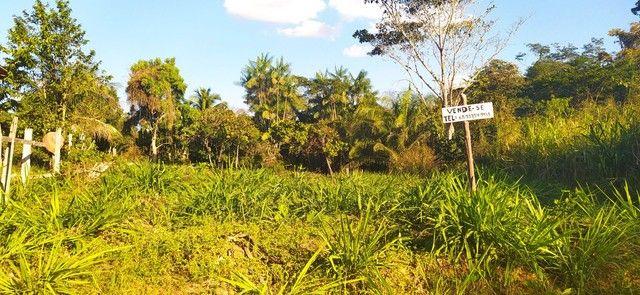 Vendo terreno na vila vitória  - Foto 2
