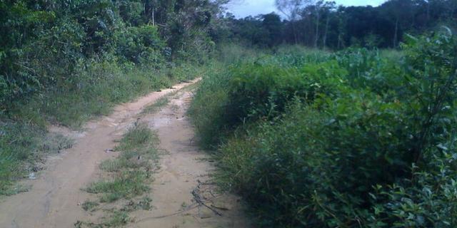 Zé Doca - Maranhão: Vendo Propriedade Rural - Foto 12