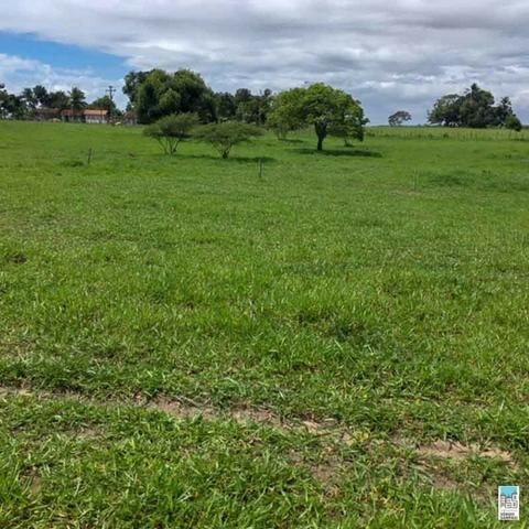 Excelente Fazenda em Amélia Rodrigues - Bahia - Foto 4