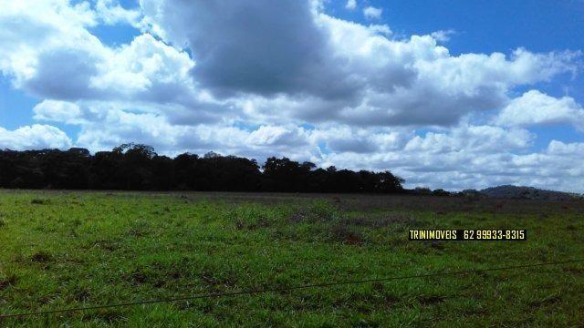 Fazenda de 13 alq. em Trindade - Foto 3