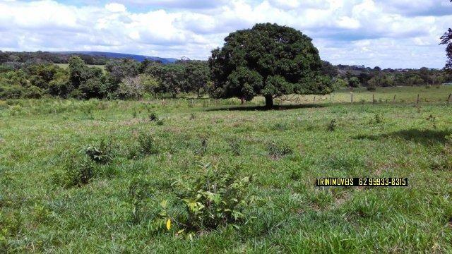 Fazenda de 13 alq. em Trindade - Foto 17