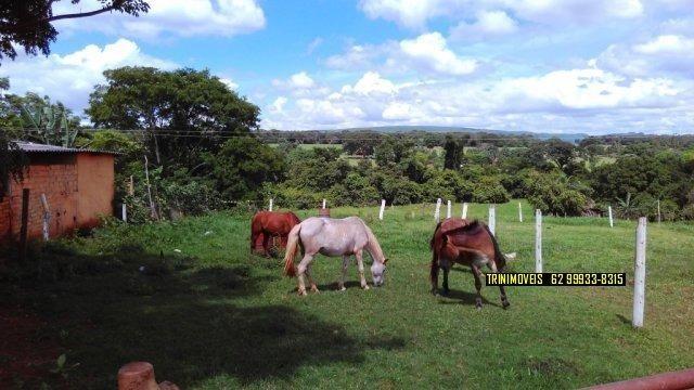 Fazenda de 13 alq. em Trindade - Foto 2