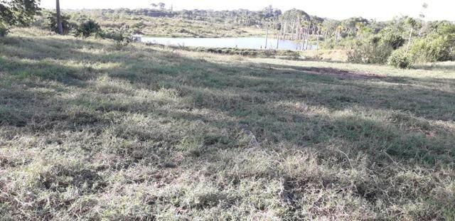 Fazenda em Roraima na BR210 - Caroebe - Foto 11