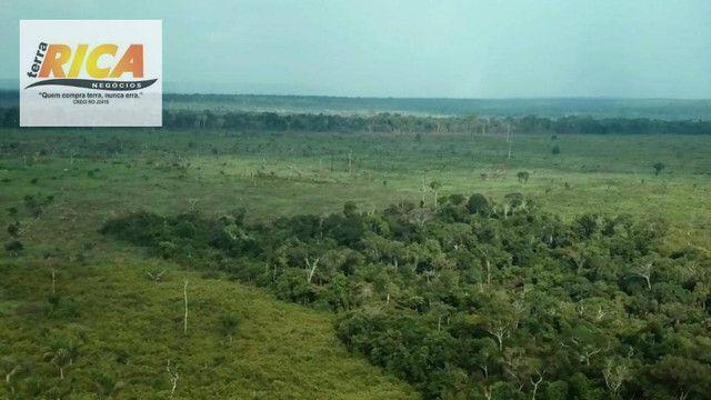 Fazenda com 11.000 Hectares à venda, na Zona Rural - Novo Aripuanã/AM - Foto 8