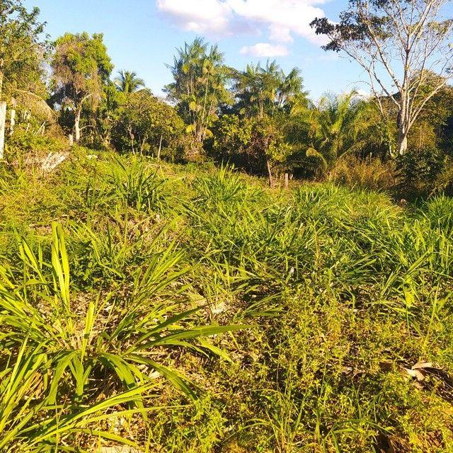 Vendo terreno na vila vitória  - Foto 5