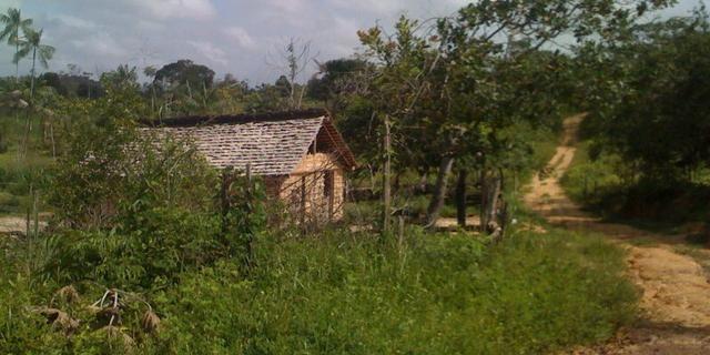 Zé Doca - Maranhão: Vendo Propriedade Rural - Foto 14