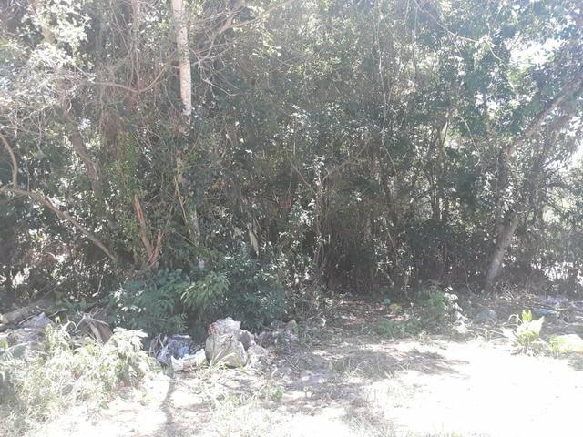 F Terreno no Bairro de Tucuns em Búzios/ - Foto 4