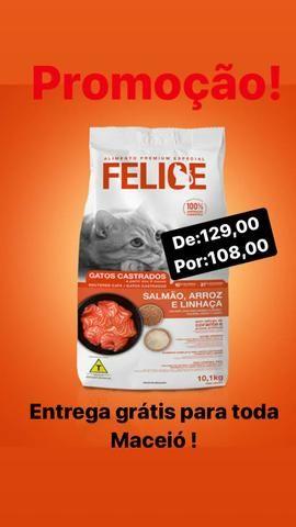 Felice gatos 10kg , Mania Pet Delivery - Foto 4
