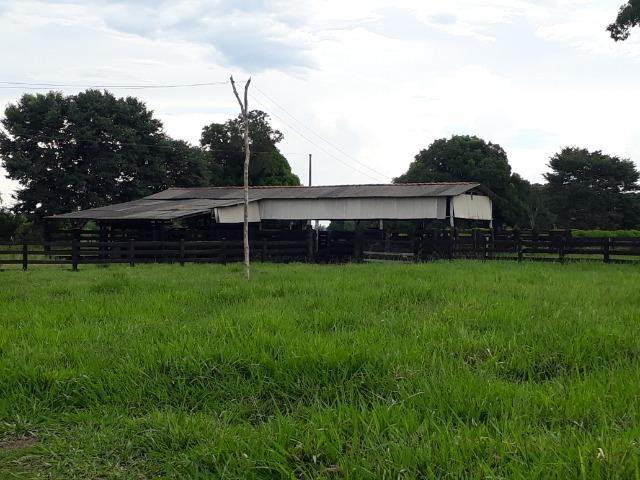 Área para confinamento ou laticínio na comunidade olho dagua na BR 364 a 30 km de Cuiabá - Foto 4