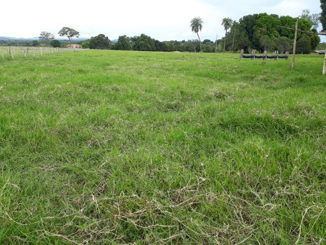 Área para confinamento ou laticínio na comunidade olho dagua na BR 364 a 30 km de Cuiabá - Foto 18