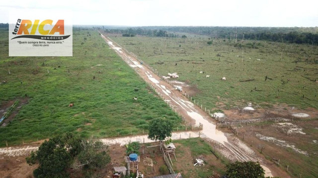 Fazenda com 11.000 Hectares à venda, na Zona Rural - Novo Aripuanã/AM - Foto 2