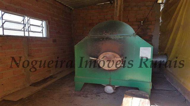 Sítio com granja, capacidade para 30.000 frangos (Nogueira Imóveis Rurais) - Foto 2