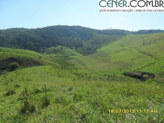 1327/Ótima fazenda de 532 ha com sede centenária em Paraíba do Sul - RJ - Foto 11