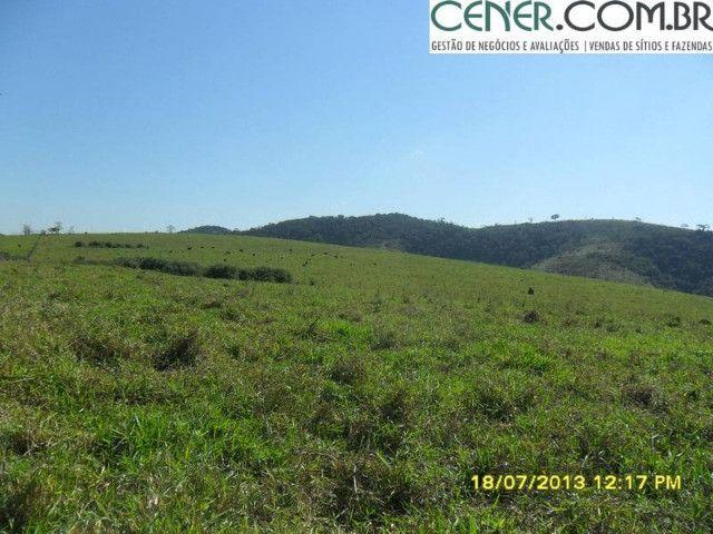 1327/Ótima fazenda de 532 ha com sede centenária em Paraíba do Sul - RJ - Foto 15