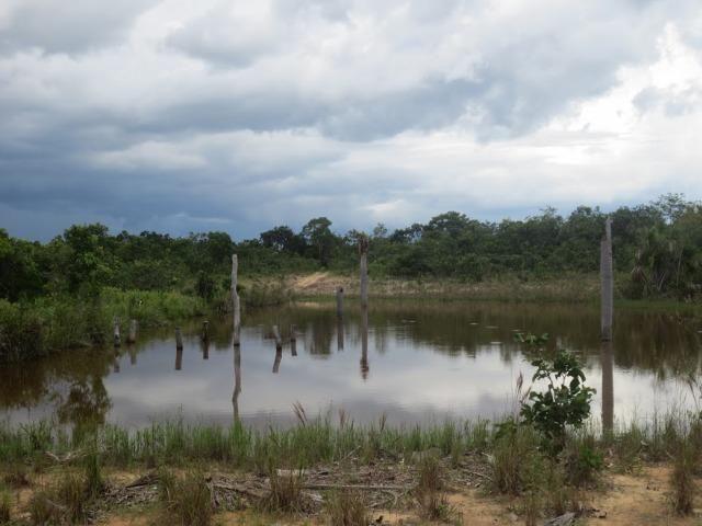 Fazenda no município de Novo São Joaquim - MT - 54 alq