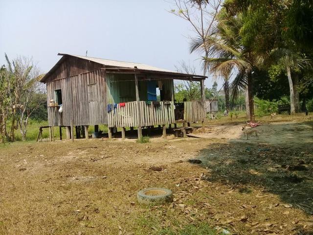 Vendo uma colônia em Porto Acre 90mil aceito propostas - Foto 2
