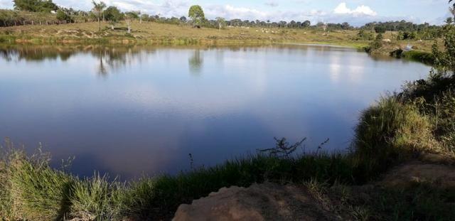 Fazenda em Roraima na BR210 - Caroebe