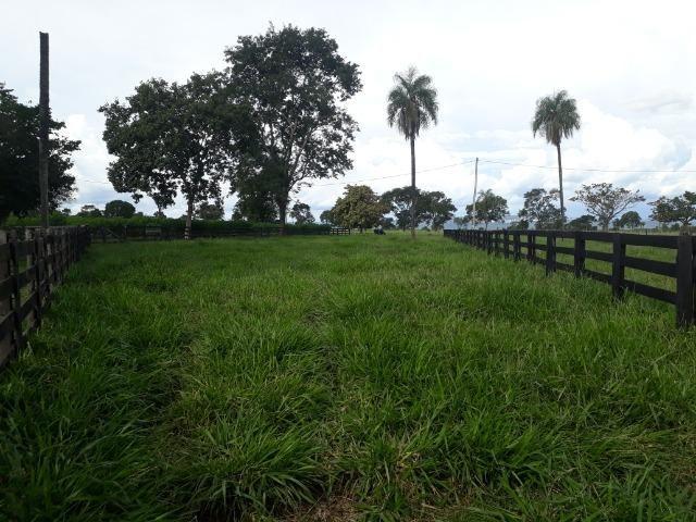 Área para confinamento ou laticínio na comunidade olho dagua na BR 364 a 30 km de Cuiabá - Foto 11