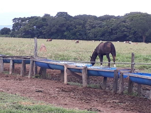 Área para confinamento ou laticínio na comunidade olho dagua na BR 364 a 30 km de Cuiabá - Foto 2