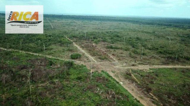 Fazenda com 11.000 Hectares à venda, na Zona Rural - Novo Aripuanã/AM - Foto 16