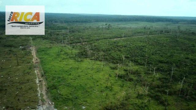 Fazenda com 11.000 Hectares à venda, na Zona Rural - Novo Aripuanã/AM - Foto 14