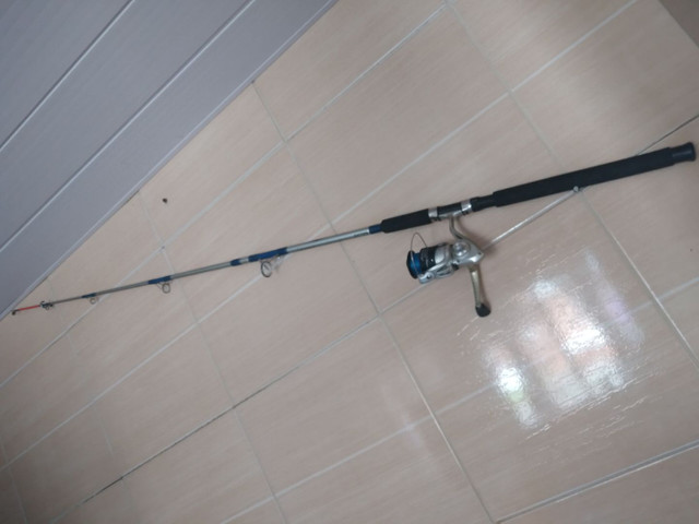 Vara de pesca 100$ - Foto 3