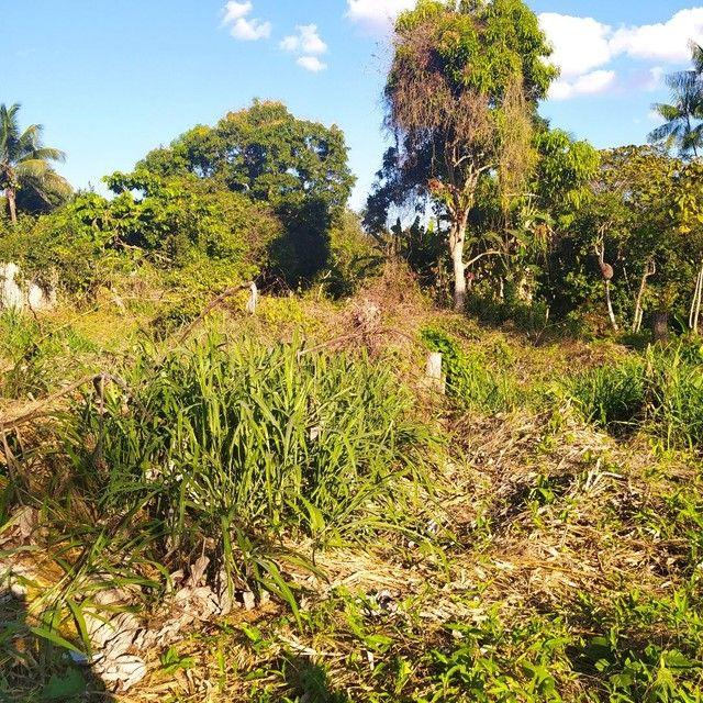 Vendo terreno na vila vitória  - Foto 4
