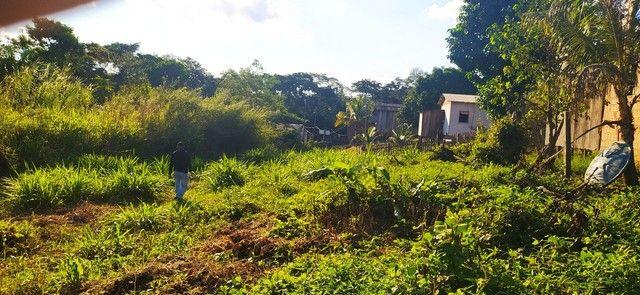 Vendo terreno na vila vitória  - Foto 3